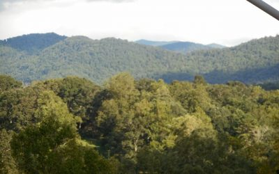Carolina Crest – Easy access with view!