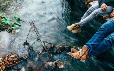 Fernwood – Idyllic Setting