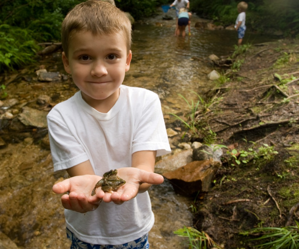 little-boy-holding-a-frog-in-his-hands-picture-id151547081