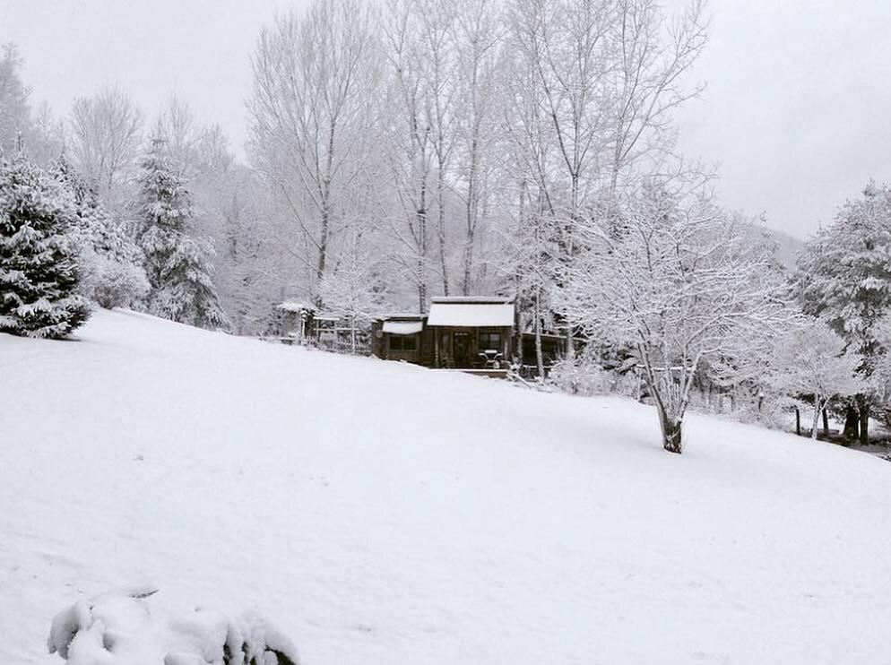 Photo Jan 04, 1 19 38 PM (2)